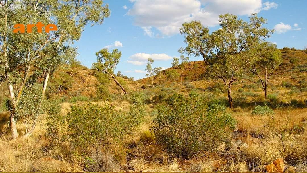 Documentaire | Australie : l'aventure des premiers hommes
