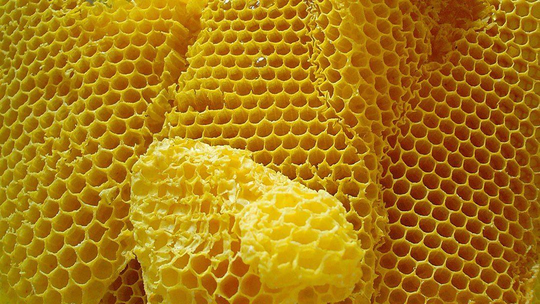 4 étapes pour faire son embouchure en cire d'abeille
