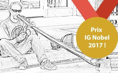 Le prix ig Nobel pour le didgeridoo et les apnées du sommeil !