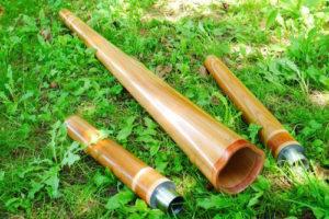 le logo du fabricant de didgeridoo DidgElement